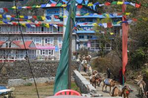 Prayer flags, big lodges and an unladen cargo donkey train that's returning to Lukla for another load