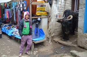 A young shopkeeper in Namche Bazaar is protected by her yak and pink pig headgear