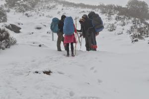 Finnish-Sherpa summit talks
