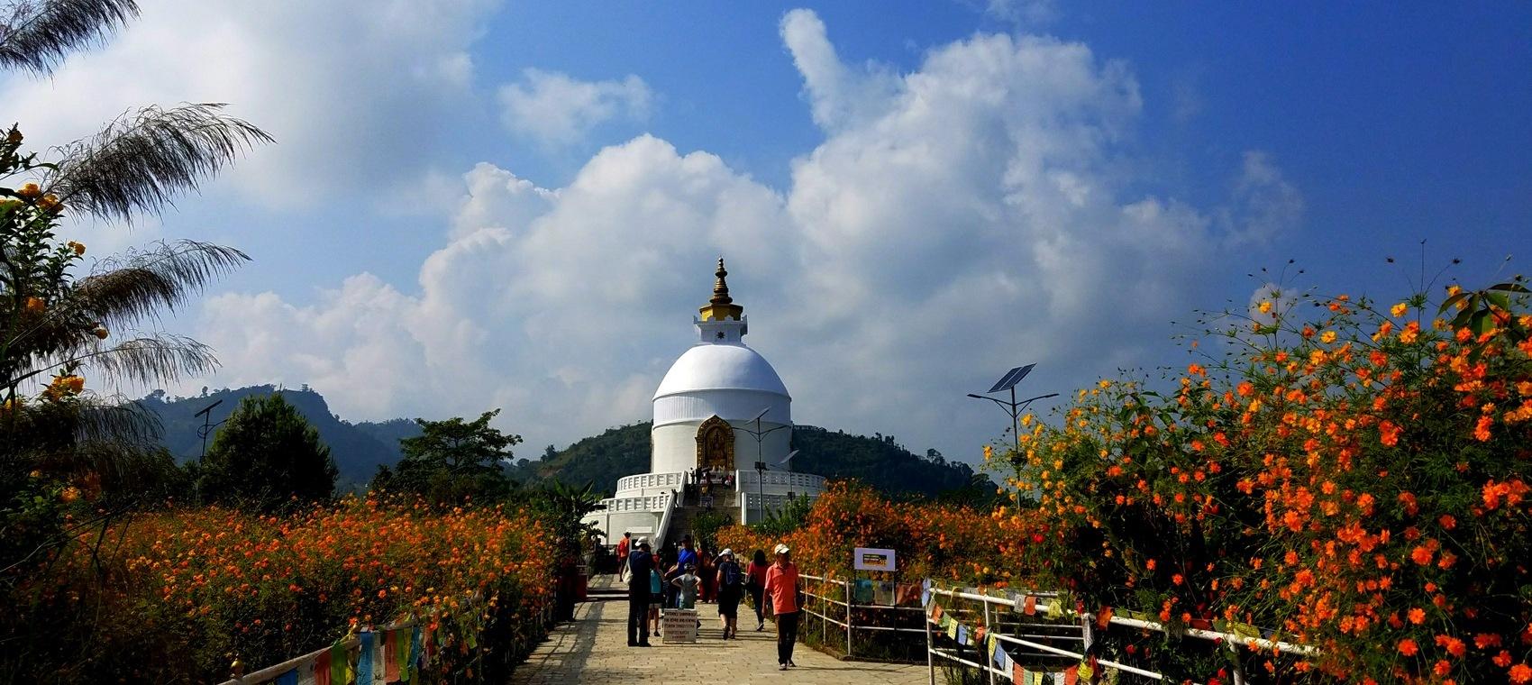 World Peace Pagoda or Stupa and flowers above Pokhara, Nepal