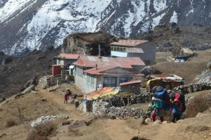 A stylish female porter trekking up the Gokyo Valley with what looks to be 80 or more lbs!