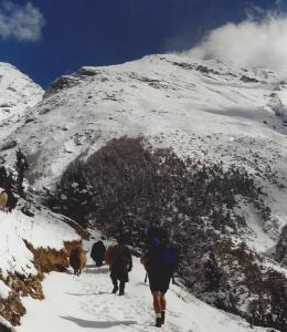 A series of switchbacks on the trail to Ghyaru keeps the hill from becoming too steep